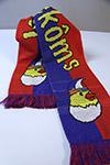 Jocus Toekôms sjaal
